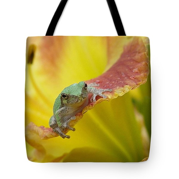 Sunning In A Day Lily Tote Bag by Carol Berning