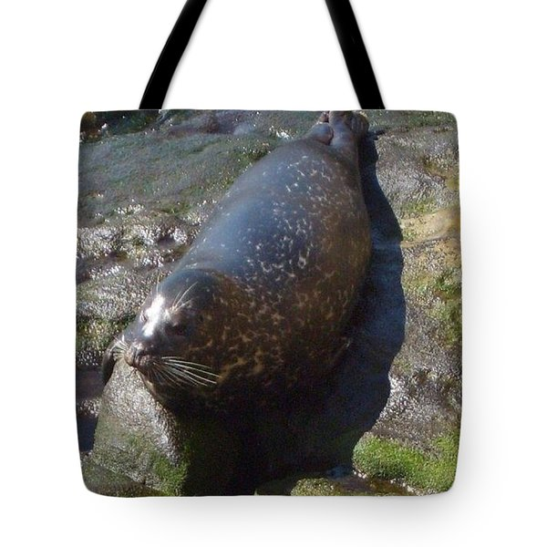 Tote Bag featuring the photograph Sunning Seal by Philomena Zito