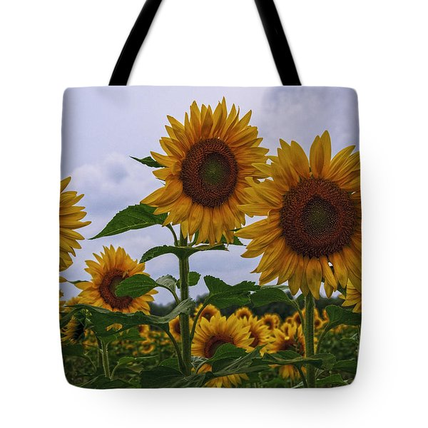 Tote Bag featuring the photograph Sunny Faces by Debra Fedchin