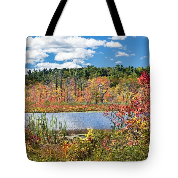 Sunny Fall Day Tote Bag by Bill Wakeley