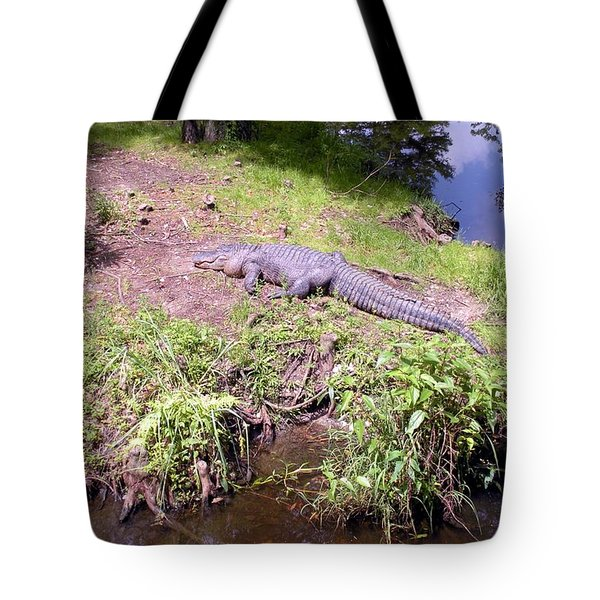 Sunny Gator  Tote Bag by Joseph Baril