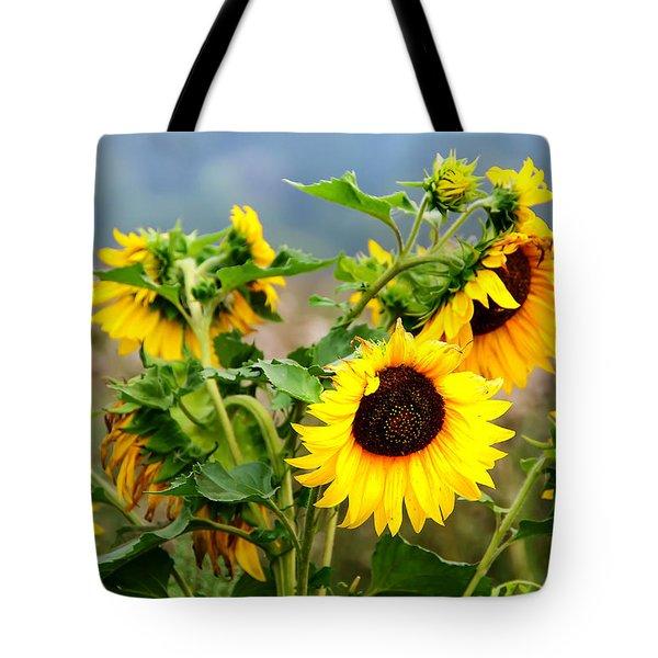 Sunny Meadow Tote Bag by Jenny Rainbow
