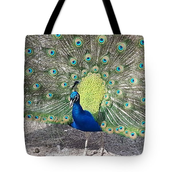 Tote Bag featuring the photograph Sunny Peancock by Caryl J Bohn