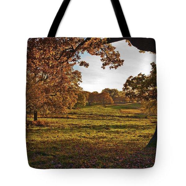 Sunny Richmond Autumn Tote Bag