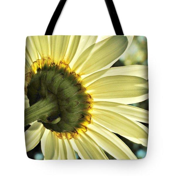 Sunny Shasta Daisy Tote Bag by Kelly Nowak