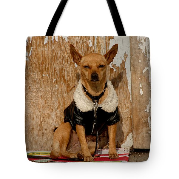 Sunny Spot. Tote Bag by Art Block Collections