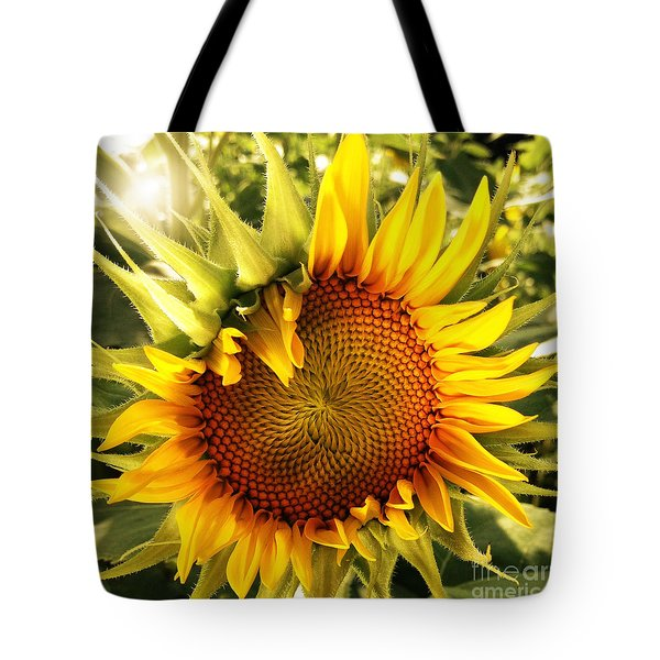 Sunny Sunflower Tote Bag by Chris Scroggins