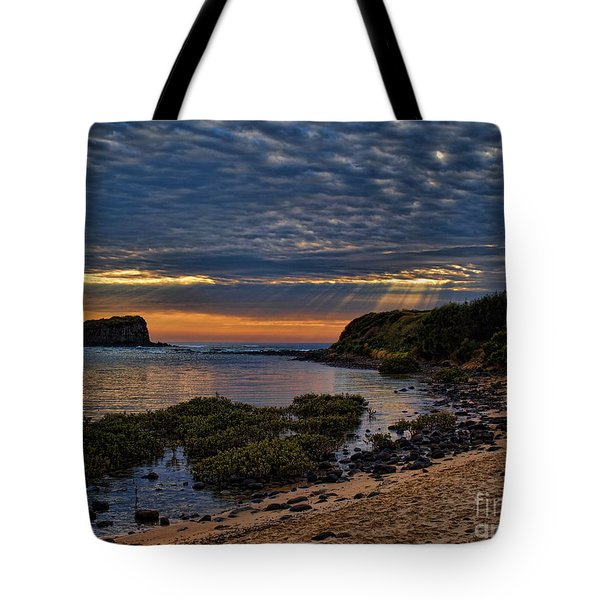 Tote Bag featuring the photograph Sunrays by Trena Mara