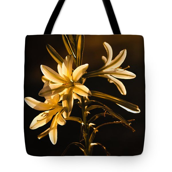 Sunrise Ajo Lily Tote Bag