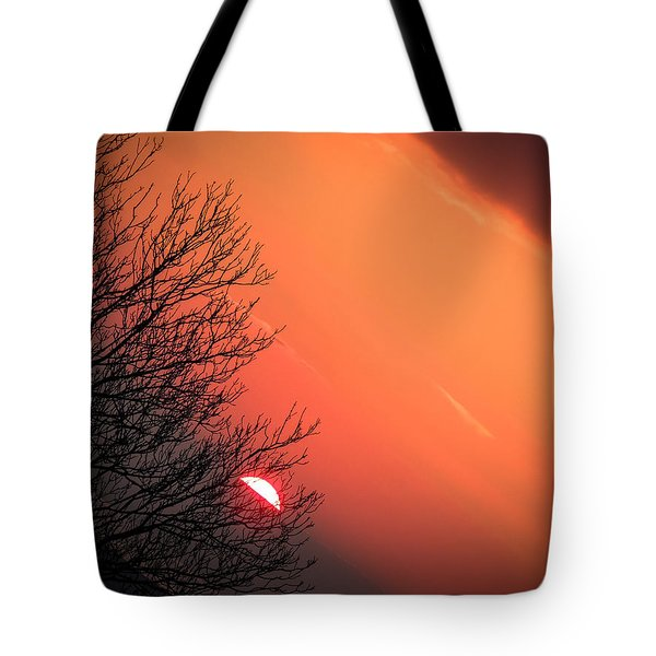 Sunrise And Hibernating Tree Tote Bag