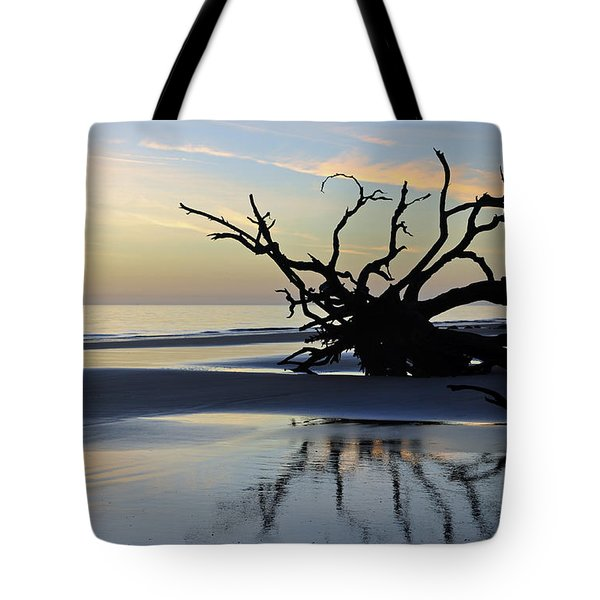 Sunrise At Driftwood Beach 6.6 Tote Bag