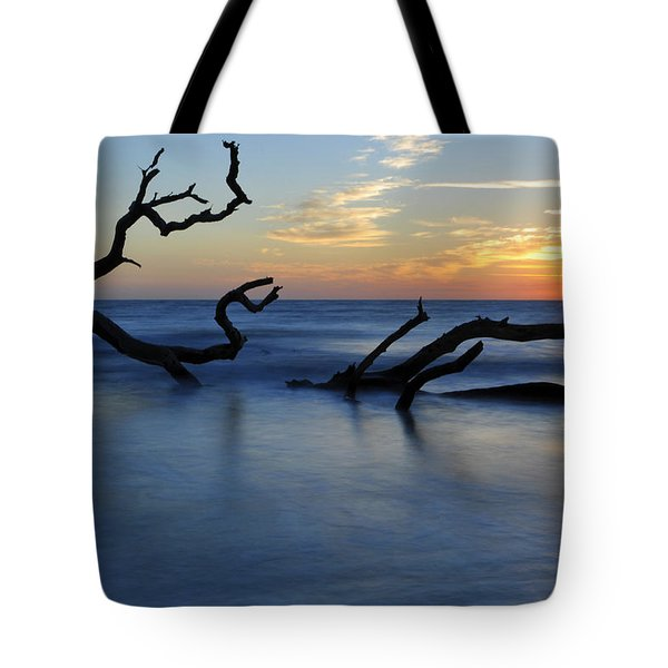 Sunrise At Driftwood Beach 7.3 Tote Bag