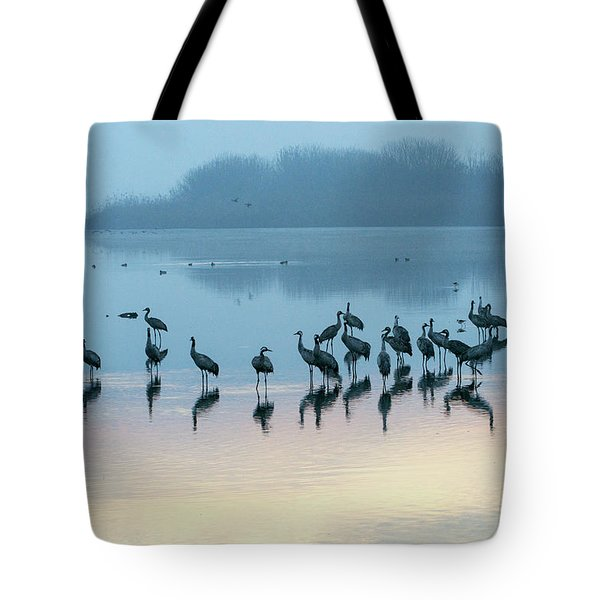 Sunrise Over The Hula Valley Israel 5 Tote Bag