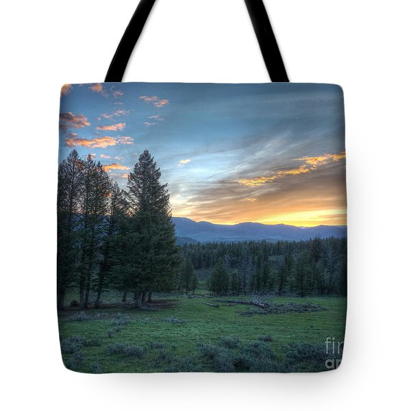 Sunrise Behind Pine Trees In Yellowstone Tote Bag