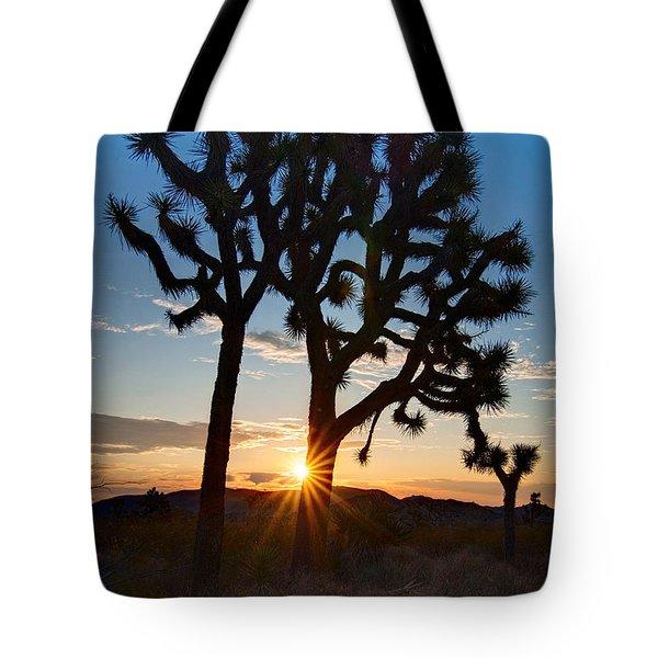 Sunrise Burst - Joshua Trees Beautifully Lit Joshua Tree National Park. Tote Bag