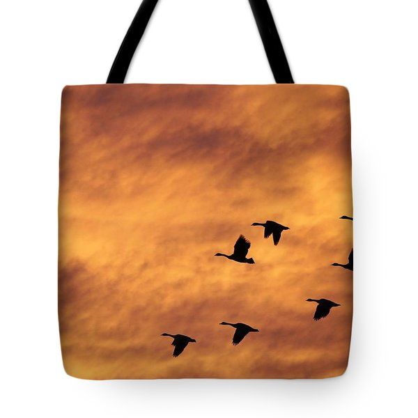 Sunrise Flight 2 Tote Bag