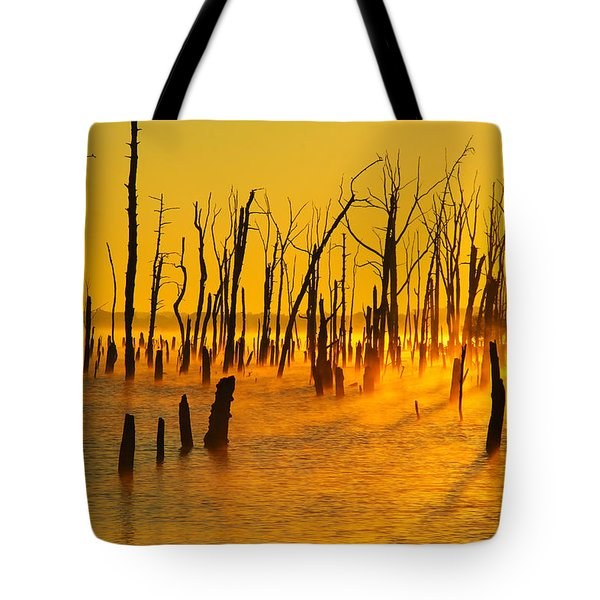 Sunrise Fog Shadows Tote Bag