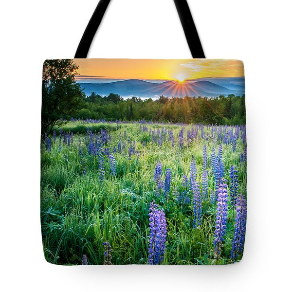 Sampler Fields - Sugar Hill New Hampshire Tote Bag