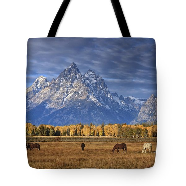 Sunrise Grazing Tote Bag