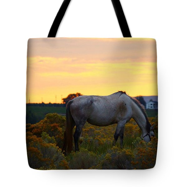 Tote Bag featuring the photograph Sunrise Horse by Lynn Hopwood