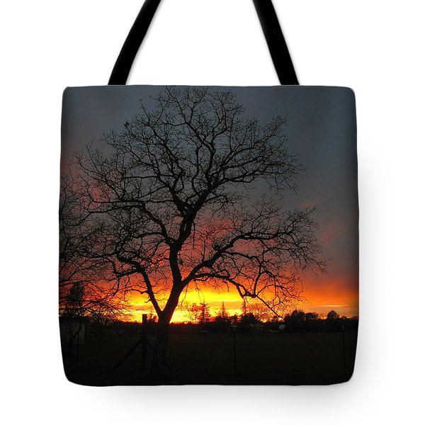 Sunset 02 18 13 Tote Bag by Joyce Dickens