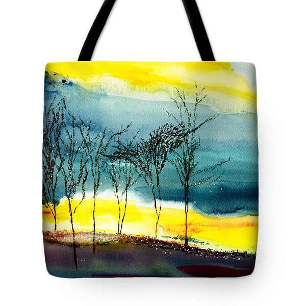 Sunset 3 Tote Bag by Anil Nene