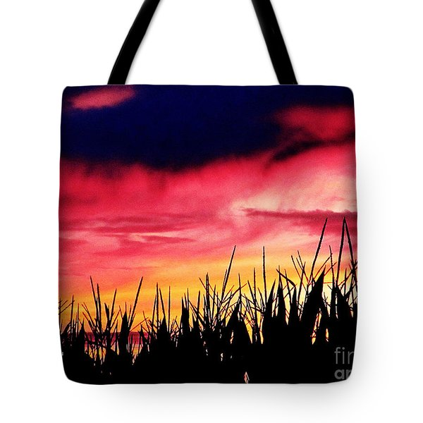 Sunset 365 62 Tote Bag by Tina M Wenger