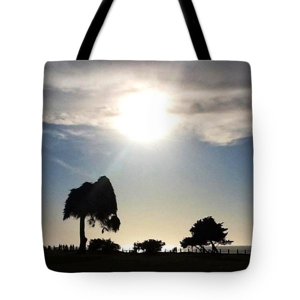 Tote Bag featuring the photograph Sunset At La Jolla by Susan Garren