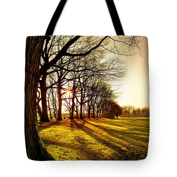 Sunset At The Park Tote Bag by Daniel Heine