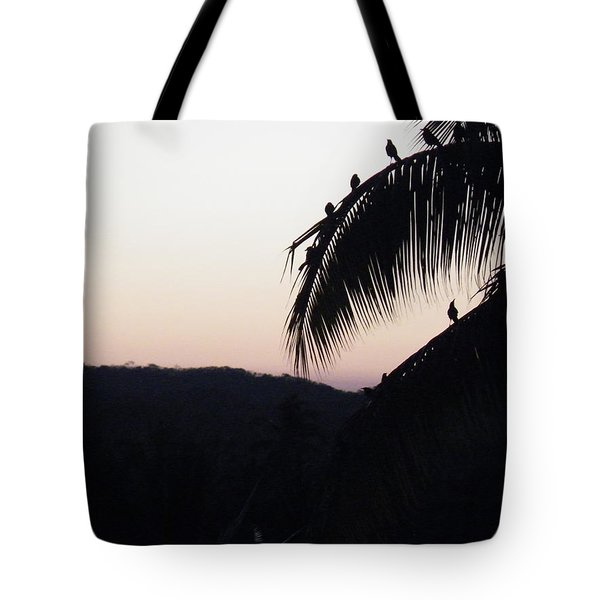 Tote Bag featuring the photograph Sunset Chorus by Brian Boyle