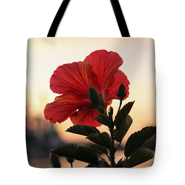 Tote Bag featuring the photograph Sunset Flower by Cynthia Guinn