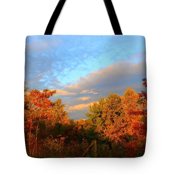 Tote Bag featuring the photograph Sunset Glow by Kathryn Meyer