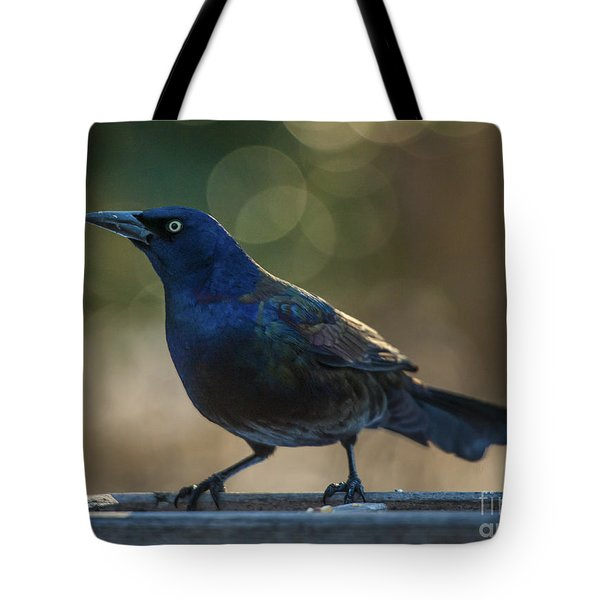 Sunset Grackle Tote Bag by Jim Moore