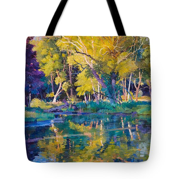 Sunset In Hinsdale Park Tote Bag