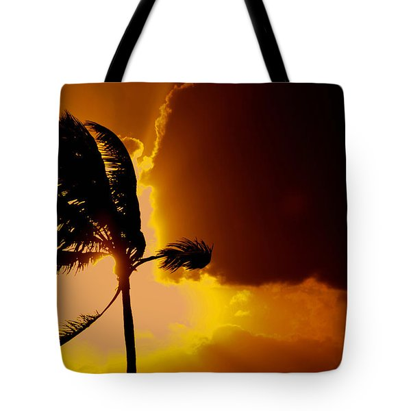 Sunset In Long Island Tote Bag by Victor Minca