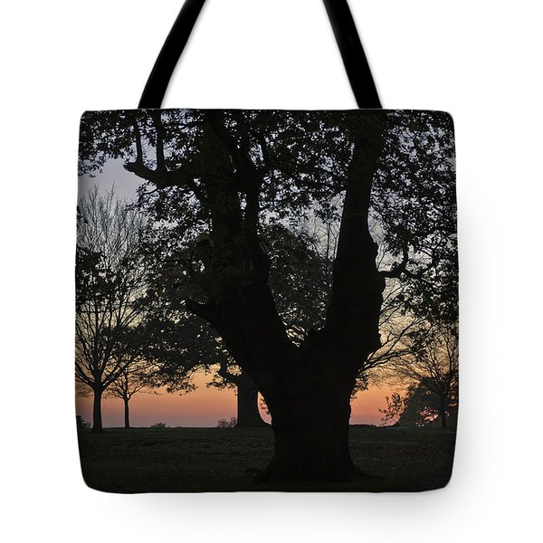 Sunset In Richmond Park Tote Bag