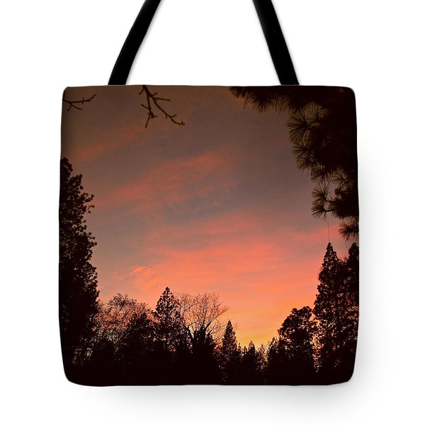 Sunset In Winter Tote Bag