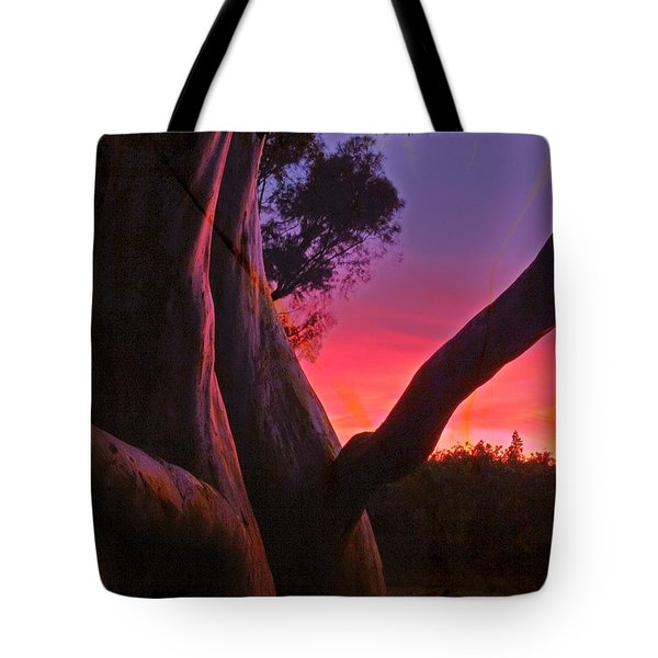 Sunset Madrone 3 Tote Bag