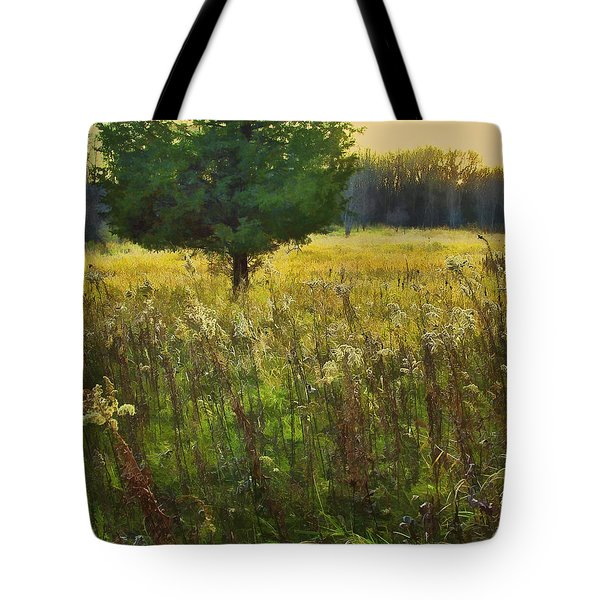 Tote Bag featuring the photograph Sunset Meadow by John Hansen
