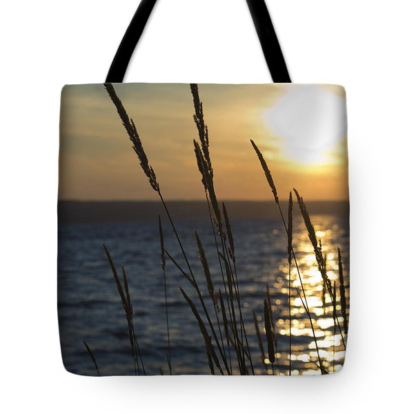 Sunset On Cayuga Lake Tote Bag