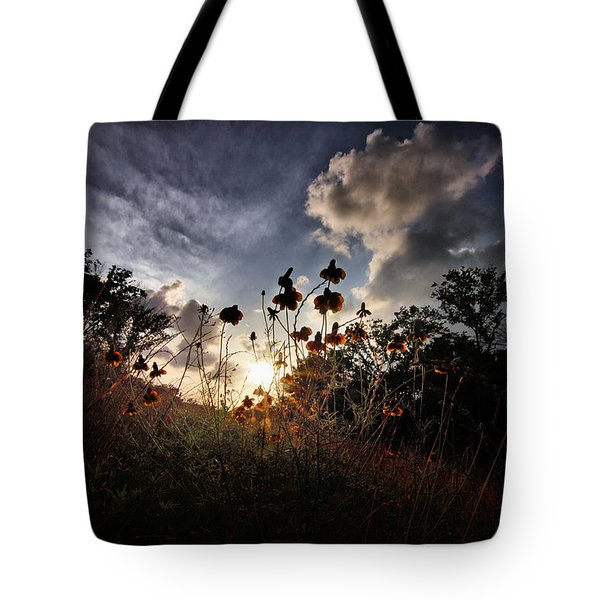 Sunset On Daisy Tote Bag