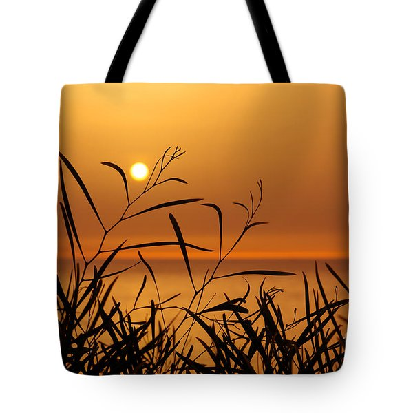 Sunset On Leaves  Tote Bag by Carlos Caetano