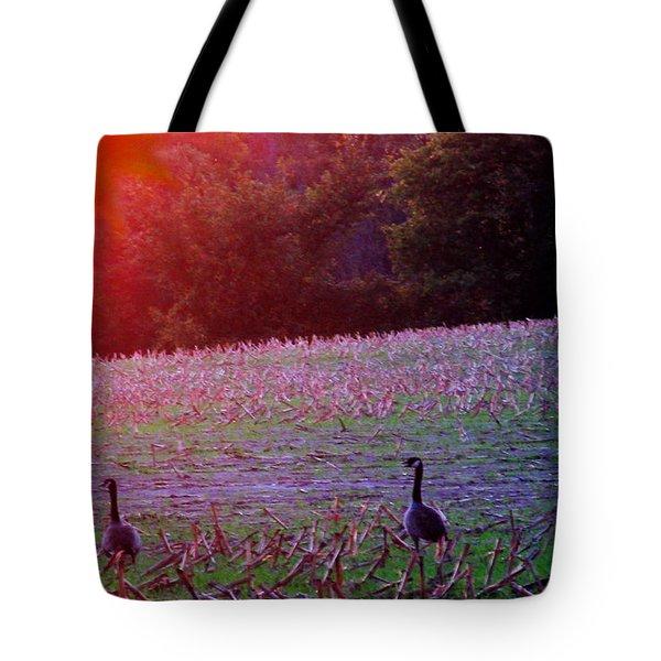 Sunset On Mallards Tote Bag by Tina M Wenger