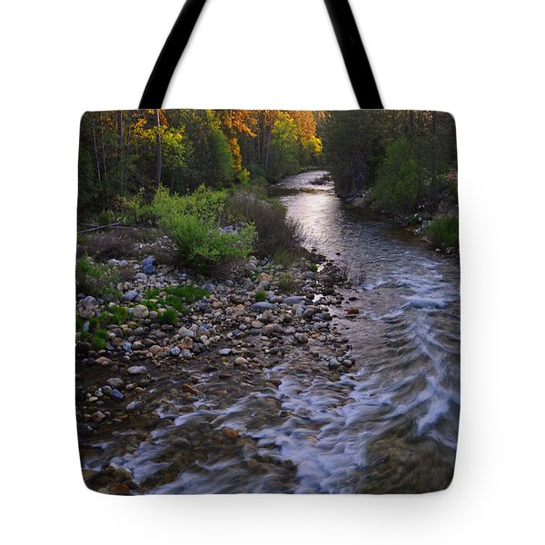 Sunset On The Merced Tote Bag by Lynn Bauer