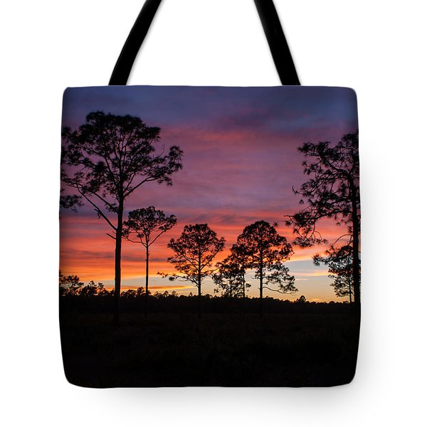 Tote Bag featuring the photograph Sunset Pines by Paul Rebmann