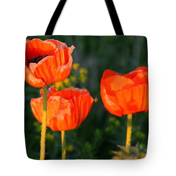 Tote Bag featuring the photograph Sunset Poppies by Debbie Oppermann