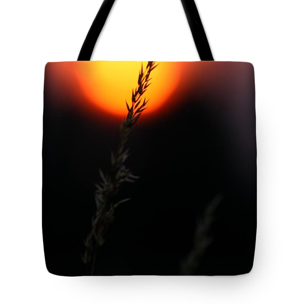 Sunset Seed Silhouette Tote Bag