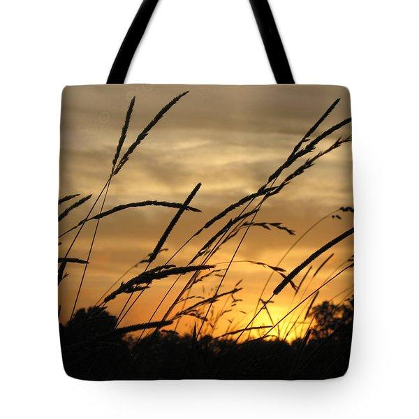 Sunset Sentinels Tote Bag