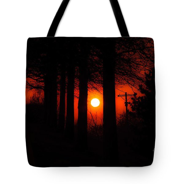 Sunset Silhouette Painterly Tote Bag by Andee Design