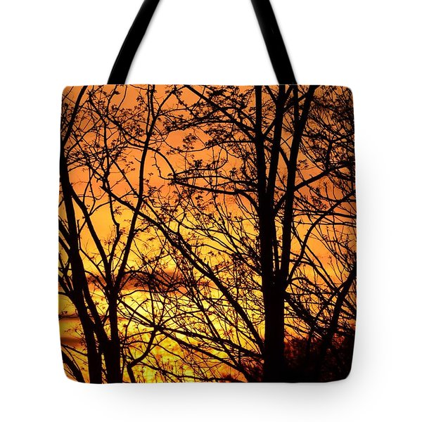Tote Bag featuring the photograph Sunset Silhouettes Behind The George Washington Masonic Memorial by Jeff at JSJ Photography